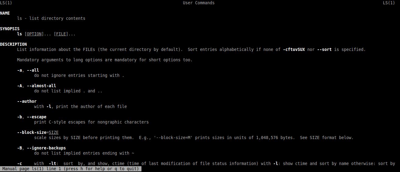2 1  Command Line Basics — CS3 Data Structures & Algorithms